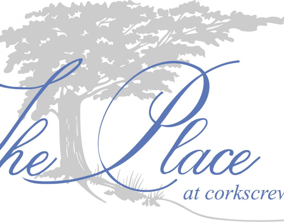 The_Place logo